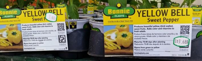 BonniePrices