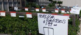 Heirloom_PriceOppty
